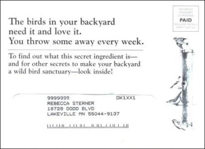 Bird Watcher's Digest Long Standing Control Outer Envelope - Rebecca Sterner